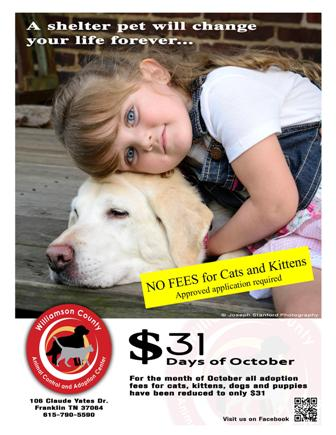 flyer girl and dog web small.jpg